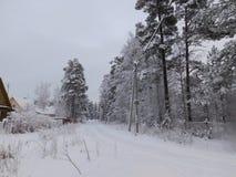 зима валов снежка неба лож заморозка мрачного дня ветвей сини Стоковые Изображения