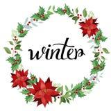 Зима Венок красных poinsettia и листьев Бесплатная Иллюстрация