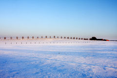 зима вечера стоковая фотография rf