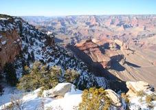 зима взгляда грандиозной оправы каньона южная Стоковое фото RF
