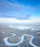 зима взгляда сверху реки пущи Стоковое Изображение RF