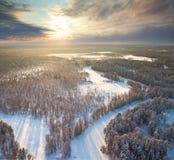 зима взгляда сверху реки утра пущи Стоковые Изображения RF