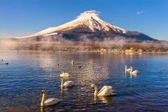 зима взгляда токио держателя 100km fuji япония западная Стоковое Изображение RF