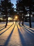 Зима вниз Стоковое Изображение