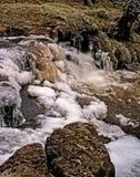 зима водопада Стоковое Фото