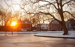 Зима во время захода солнца Стоковые Фото