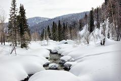 зима водоворота потока падений стоковые фото