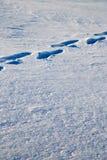 зима времени снежка следов ноги Стоковое Изображение