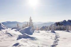 зима времени снежка следов ноги зима температуры России ландшафта 33c января ural Ural, Zyuratkul Стоковое Изображение