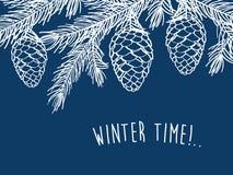 зима времени снежка цветка Стоковые Фото