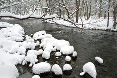 зима времени Стоковые Изображения RF