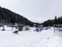 Зима в больших горах Кавказа Стоковое Изображение