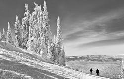 Зима в высоких горах Стоковое Фото