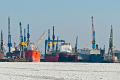 Зима в гавани Стоковое Изображение RF
