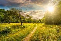 Зима в горах встречает весну в долине на заходе солнца Стоковые Изображения