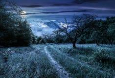 Зима в горах встречает весну в долине Стоковое фото RF