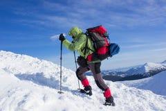Зима в горах стоковые фотографии rf
