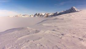 Зима в горах Tatra Стоковое Фото