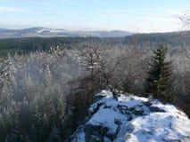 Зима в гористой местности стоковое фото rf