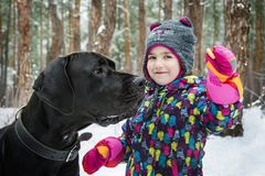 Зима в древесинах маленькая девочка дразнит большую собаку с бейгл стоковые изображения rf