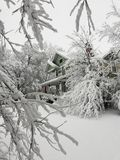 Зима в Канзасе стоковое изображение