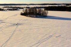 Зима в Литве Стоковая Фотография