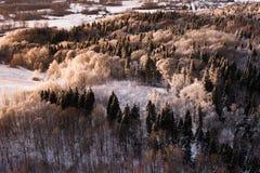 Зима в Литве Стоковые Изображения