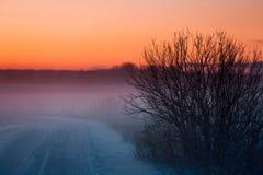 Зима в Литве Стоковое фото RF