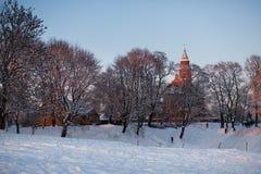 Зима в Литве Стоковое Изображение RF