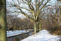 Зима в Нидерландах Стоковые Изображения