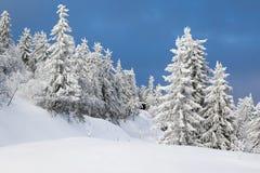 Зима в Норвегии - Lifjell Telemark Стоковое Изображение RF
