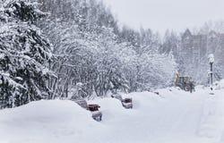 Зима в парке города стоковое изображение rf