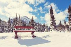 Зима в парке ледника стоковые изображения