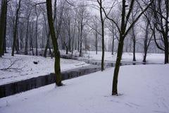 Зима в парке 1 Стоковые Изображения