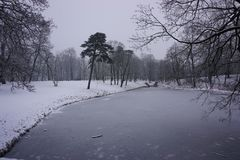 Зима в парке 2 Стоковое фото RF