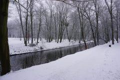Зима в парке 3 Стоковое Изображение RF