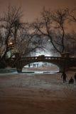 Зима в парке Cismigiu Стоковая Фотография
