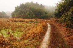 Зима в сельской местности Стоковое Изображение RF