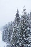 Зима в украинских Карпатах Стоковые Фото
