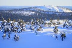 Зима в Финляндии. Стоковая Фотография RF