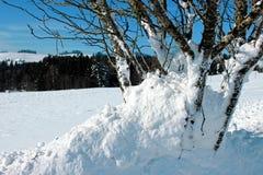 Зима в Breitnau в черном лесе, Германии Стоковые Изображения RF