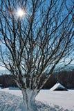 Зима в Breitnau в черном лесе, Германии Стоковое Изображение RF