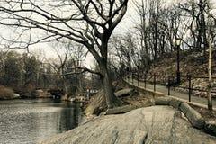 Зима в Central Park Манхаттане Нью-Йорке Стоковая Фотография