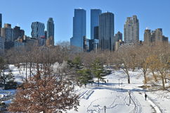 Зима в Central Park, Нью-Йорке. Стоковая Фотография RF