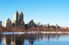 Зима в Central Park Стоковые Изображения