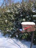Зима в NC стоковые фото