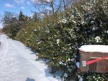 Зима в NC стоковая фотография rf