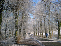 Зима в Padiham Lancashire Стоковое Фото