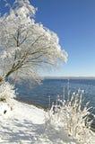 Зима в Tutzing на озере Starnberg, Германии Стоковая Фотография