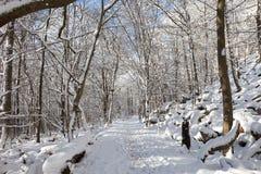 зима Германии Стоковое Изображение RF